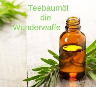 Teebaumöl ist ein Alleskönner gegen Hämorrhoiden